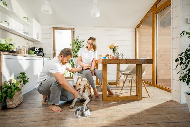 droits et obligations d'un locataire possédant un animal de compagnie